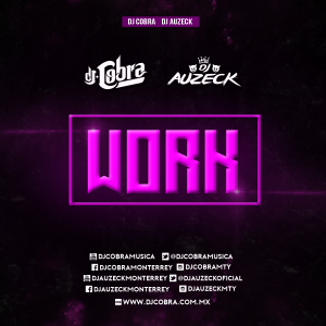 WORK - RIHANNA ( DJ COBRA FT D from Dj Auzeck